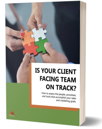 Assess ebook cover