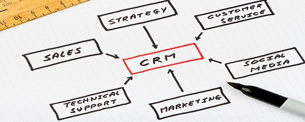 CRM tree map image on paper