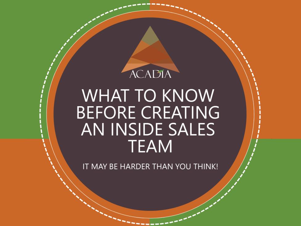 Image for Creating_Inside_Sales EBook
